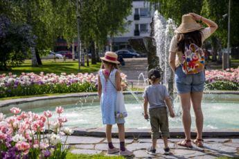 Lahiomutsi Mikkeli Kotimaanmatkailu Juna Junamatkailu Maata Pitkin Kesa Lasten kanssa-8484